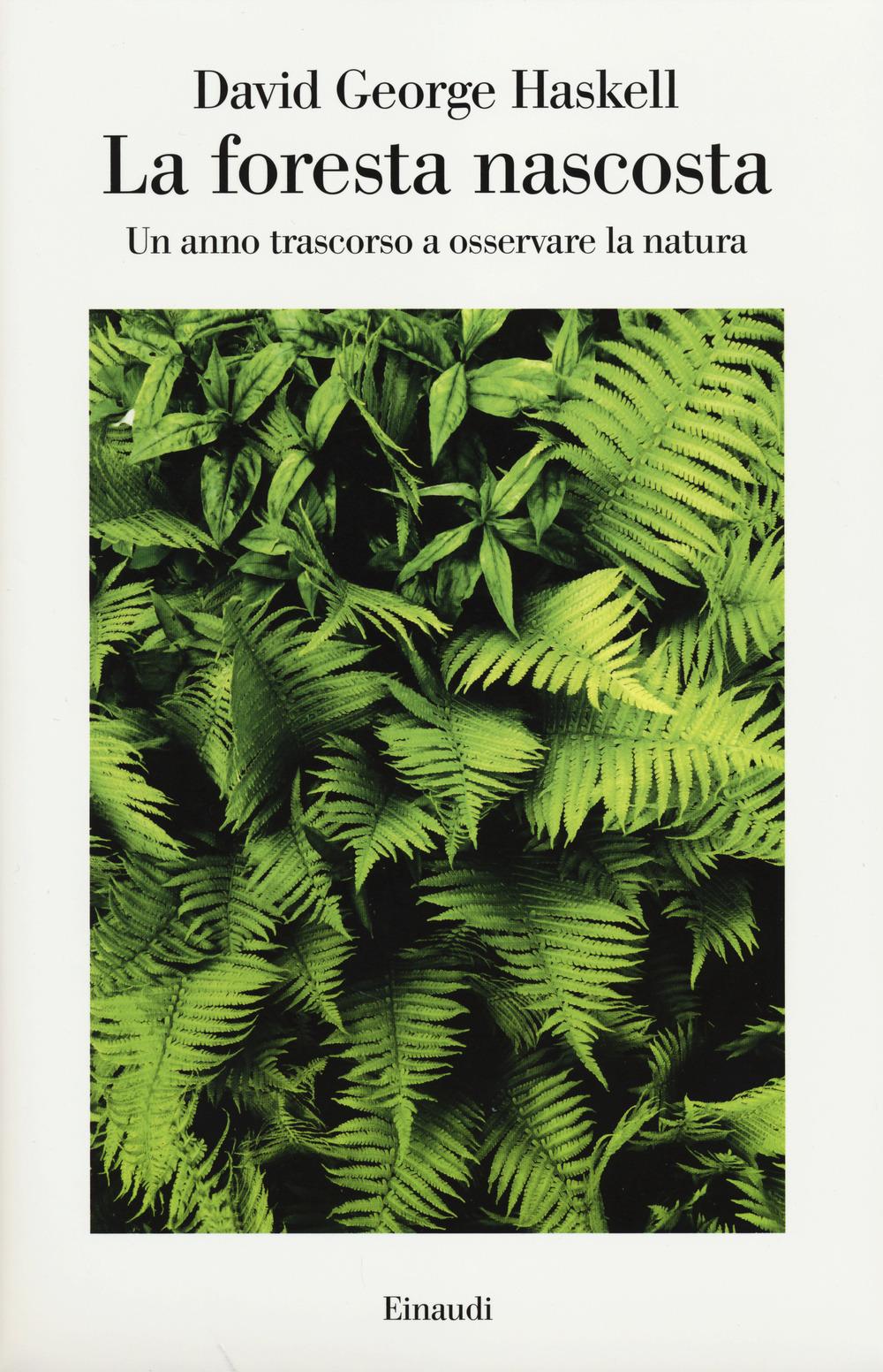 copertina-la-foresta-nascosta